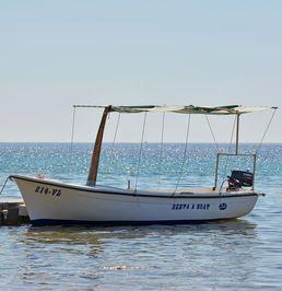 Marino 4.60 | Passenger boat