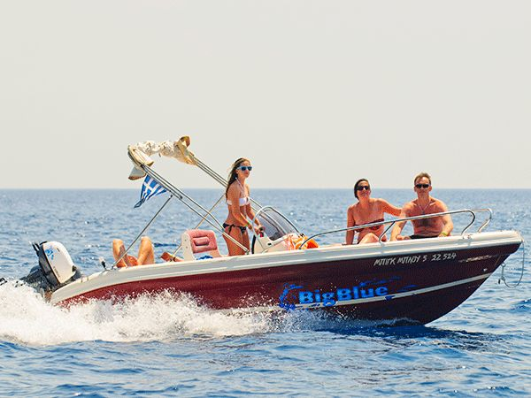 Ranieri 19 | Shark