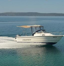 Bayliner 1802 | Trophy
