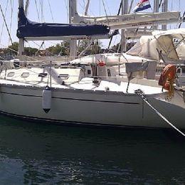 Elan 31   Delfin
