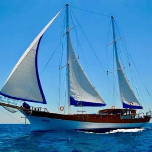 Gulet 260 | Askim Deniz