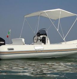 BAT 510   Cayman
