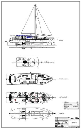 Custom Built 33 | Rara Avis