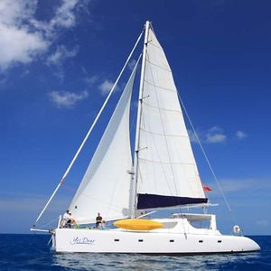 Voyage 580 | Yes Dear