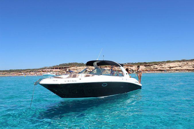 Sea Ray 295   Hydrus