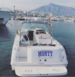 Sea Ray 290   Monty