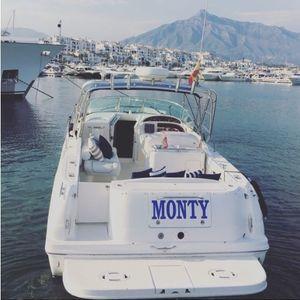 Sea Ray 290 | Monty