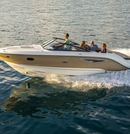 Sea Ray 250 SS | MerC
