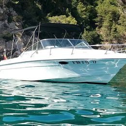 Rinker 230 | Tender Two