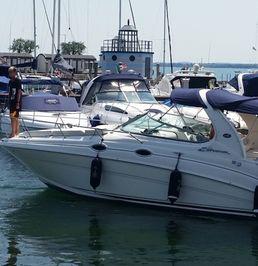 Sea Ray 315 Sundancer | Stella