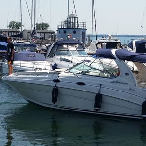 Sea Ray 315 Sundancer | Stella