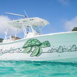 Seafox Commander 328 | The Slow Turtle