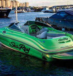 Sea Ray 240 | Zelenka