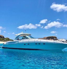 Sea Ray 500 Sundancer | Joyce