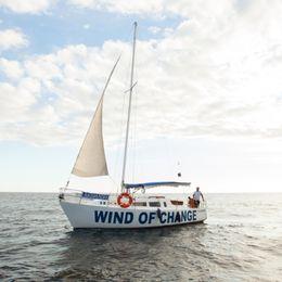 Custom Built 30 | Wind of Change