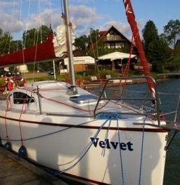 Antila 24   Velvet