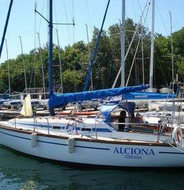 Custom Built 25   Alciona