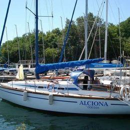 Custom Built 25 | Alciona