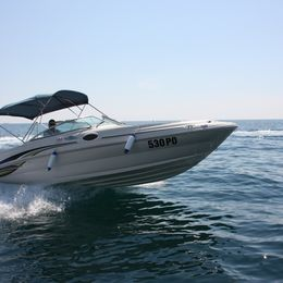 Sea Ray Sundeck 240 | 02